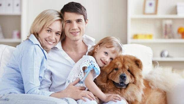 Wills & Trusts dog-young-family Direct Wills Earls Court